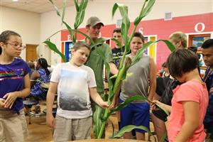 Farm Hub gives lesson on corn at Edson